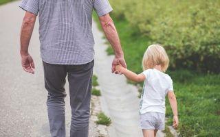 Лишение родительских прав при исправной оплате алиментов