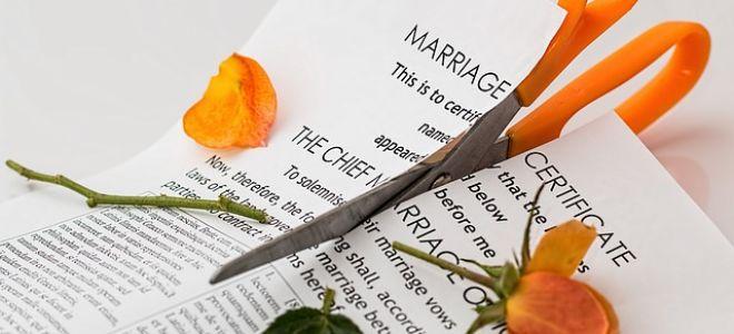 Заявление на развод и раздел